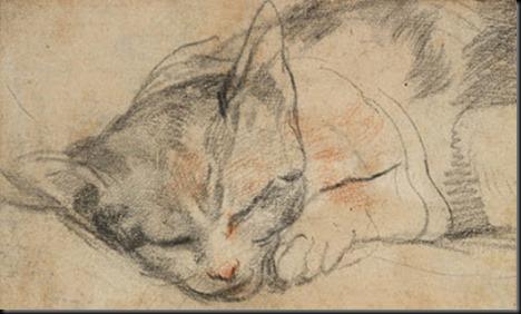 Barocci_Study of a Cat